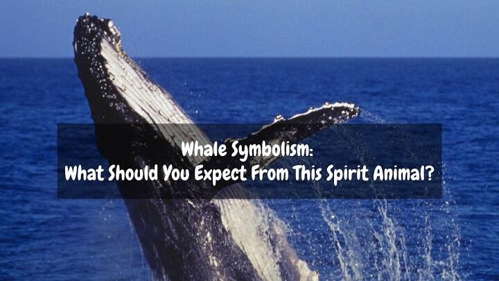 whale symbolism