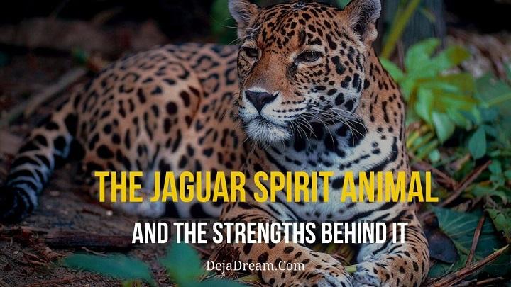jaguar spirit animal