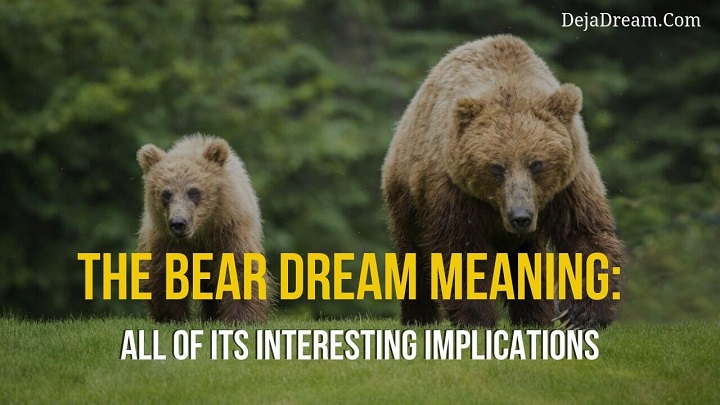 bear dream meaning