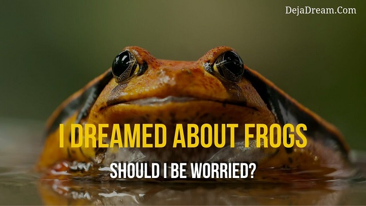 dreamed abou frogs