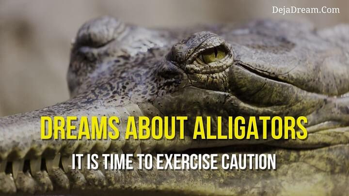 dreams about alligators