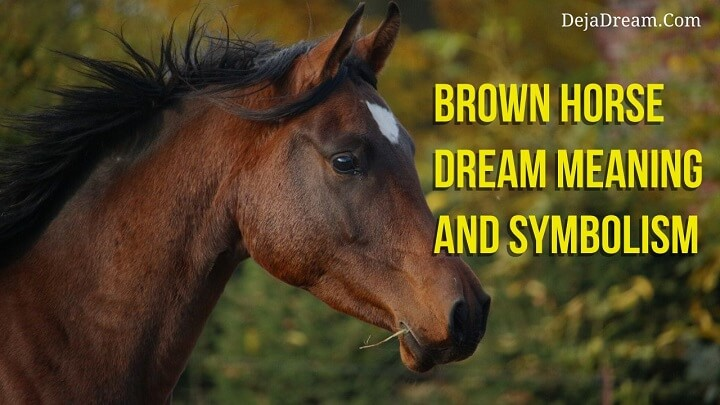 brown horse dream meaning