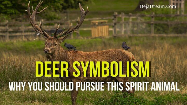 deer-symbolism