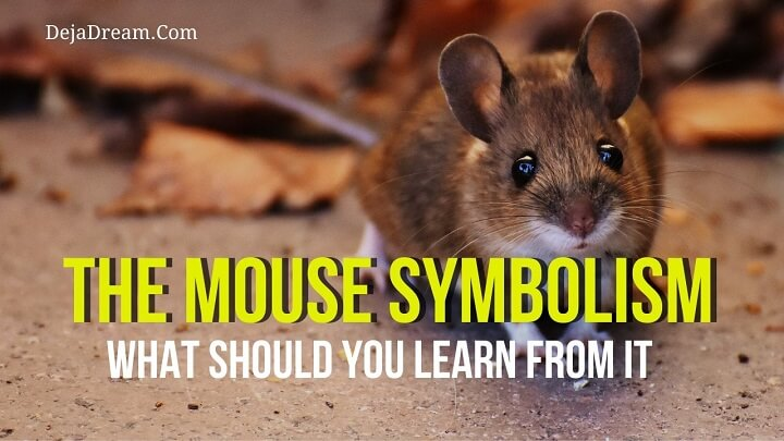 mouse symbolism