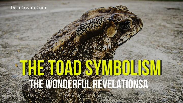 toad symbolism
