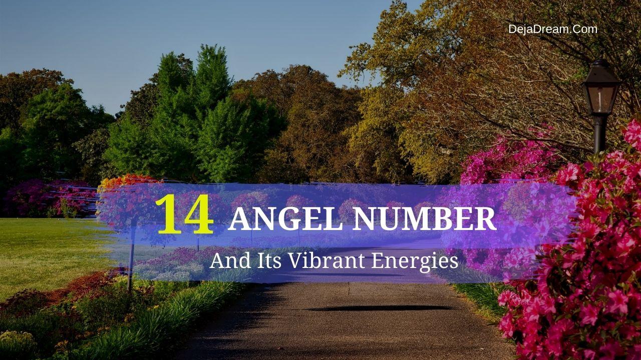 14 angel number