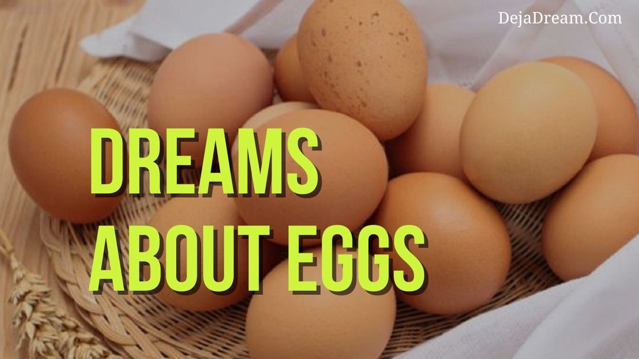 Dreams About Egg