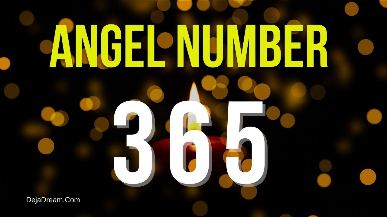 angel number 365