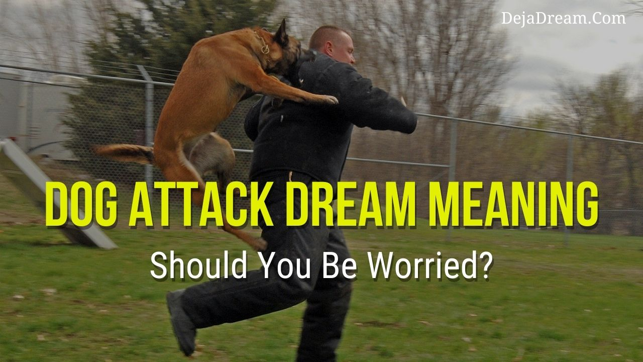 dog attack dream meaning